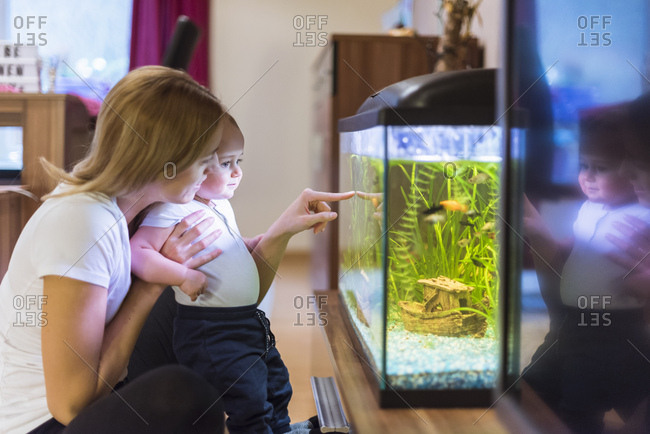 Mother and baby son looking at aquarium