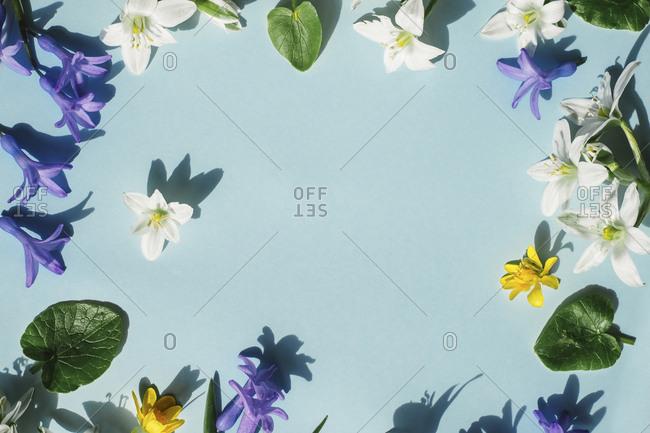 Blossoms on light blue background