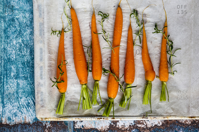 Row of raw carrots and fresh rosemary on baking tray
