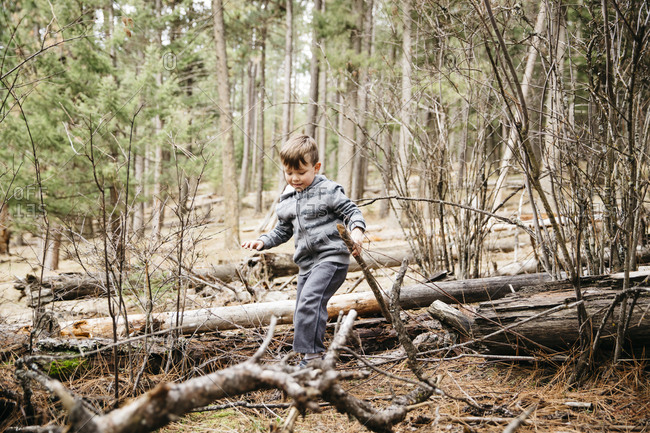 Little boy walking over fallen trees in the woods