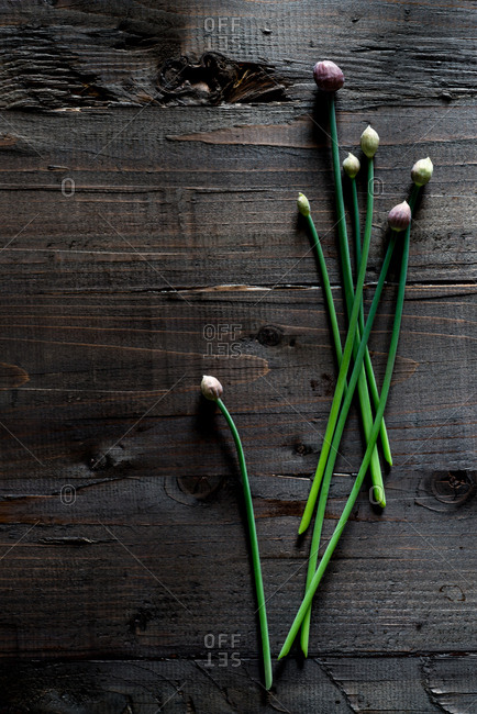 Chives on a wood background