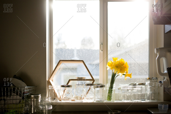 Daffodils and jars on window