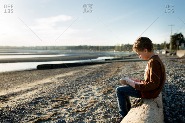 Boy reading on a shore