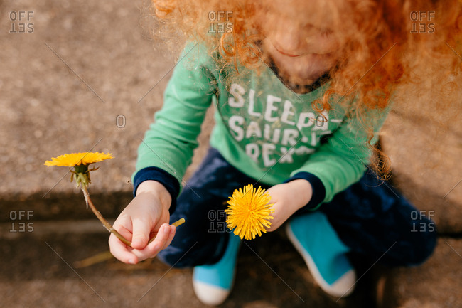 Child in pajamas with two dandelions