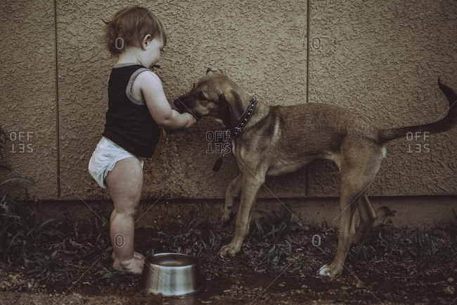 Boy with dog standing by wall in backyard