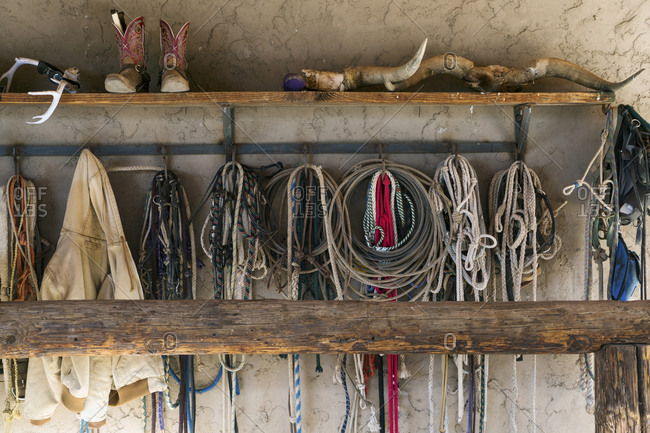Ropes hanging to hooks on wall