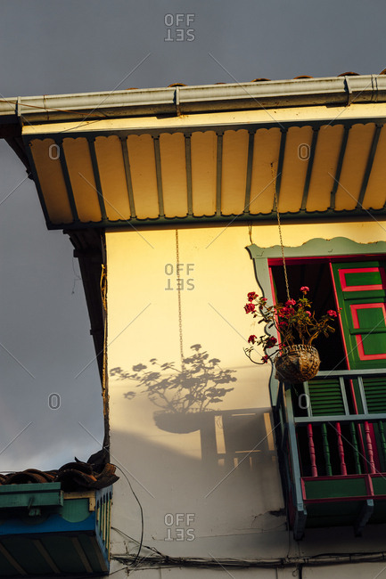 Shadows of a plant hanging of the roof and a balcony at sunset in Salento, Colombia
