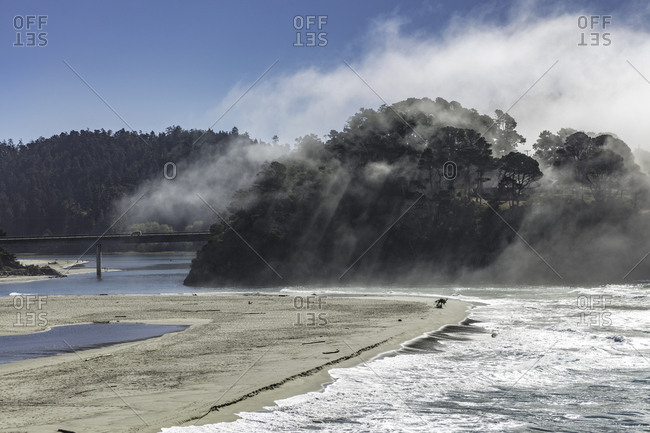The vantage point from a seaside cliff in Mendocino, California has a view of a fog enveloped forest and sandy beach.