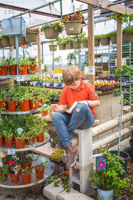 Boy reading in plant nursery