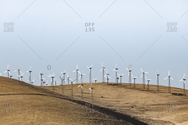 Altamont Pass wind mill farm in the Diablo Range of Northern California.
