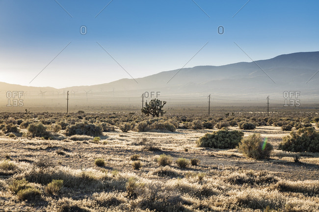 Power lines, windmills and mountains stand  in the distance of the Mojave Desert in California.