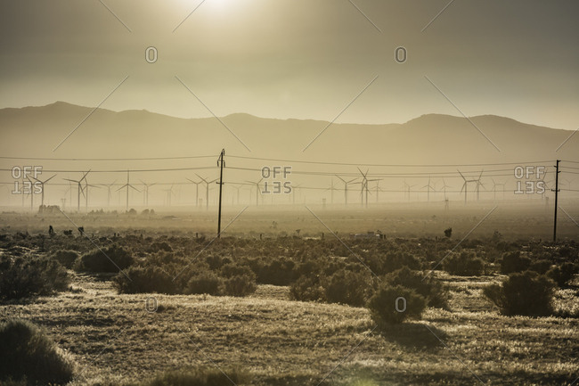 Windmills spin and power lines stand in the sun-drenched and dusty sky of the Mojave Desert in California.