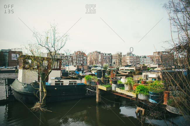 House Boat covered in plants