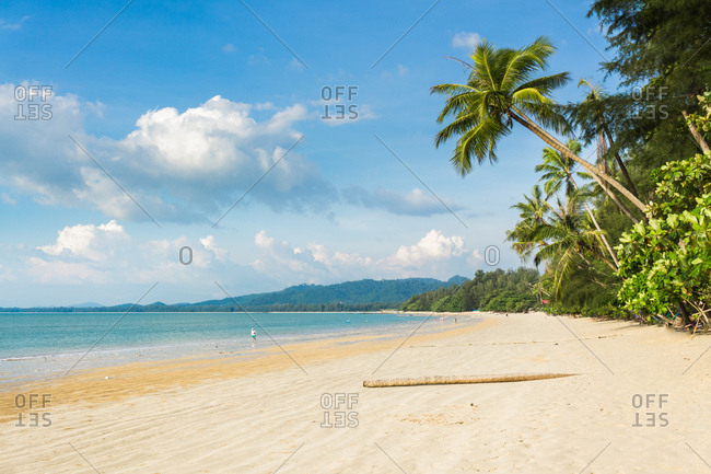 Coconut Beach on the coast of Khao Lak, Thailand