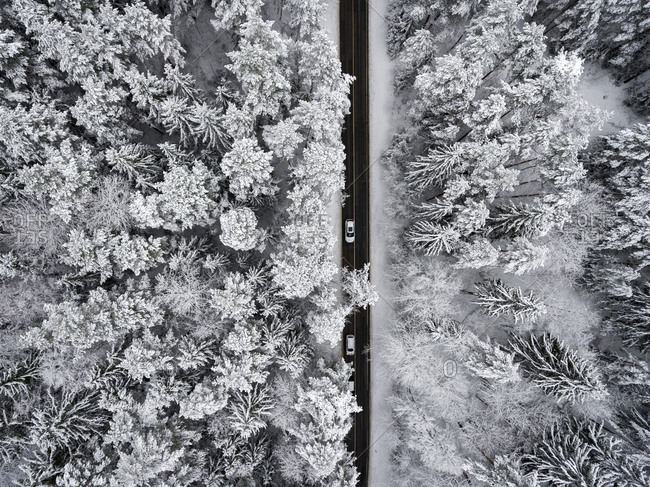 Aerial view of a road through a frozen forest