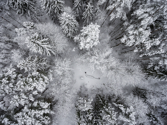 Aerial view of a small clearing in a frozen forest