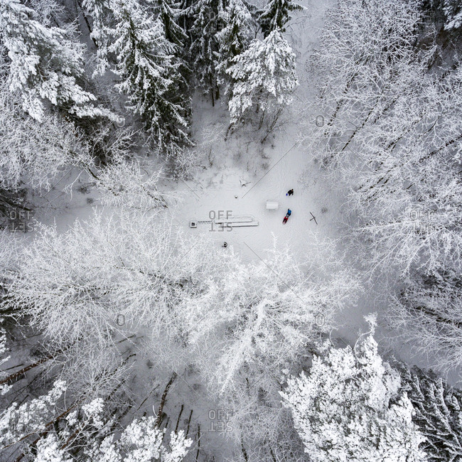 Aerial view of people playing in a clearing in a frozen forest