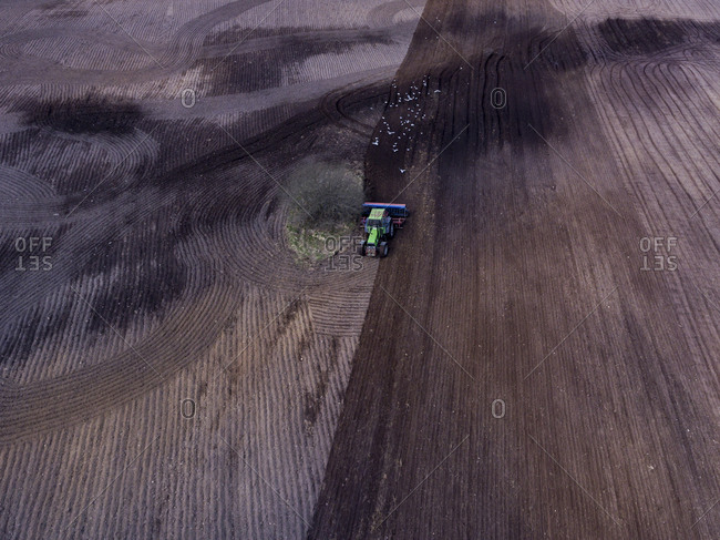 Aerial view of a tractor in a field followed by gulls