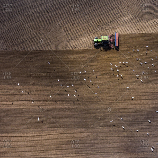 Aerial view of a tractor plowing lines in a rural field