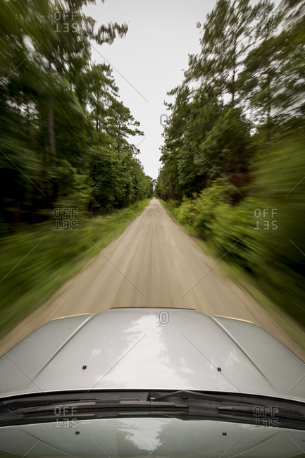 Off-road vehicle exploring road lined with longleaf pines in Croatan National Forest