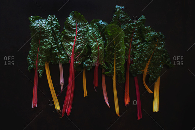 Large leaves of Swiss chard arranged next to each other