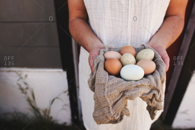 Person holding a variety of eggs in hands
