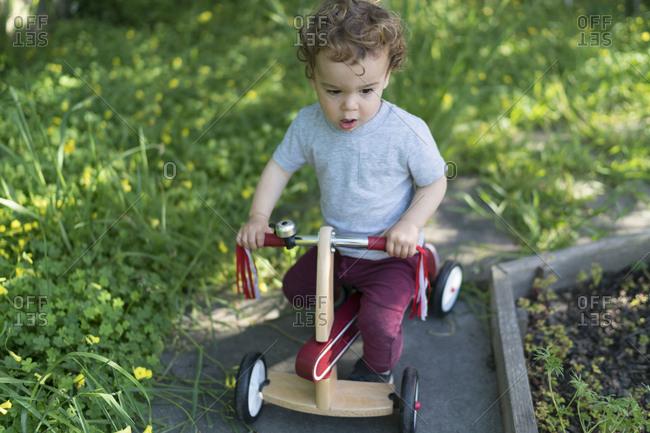 Toddler on trike in summer yard