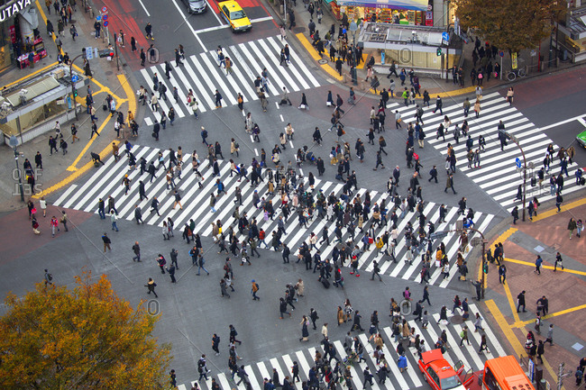 Tokyo, Japan - December 1, 2015: Shibuya intersection during the day