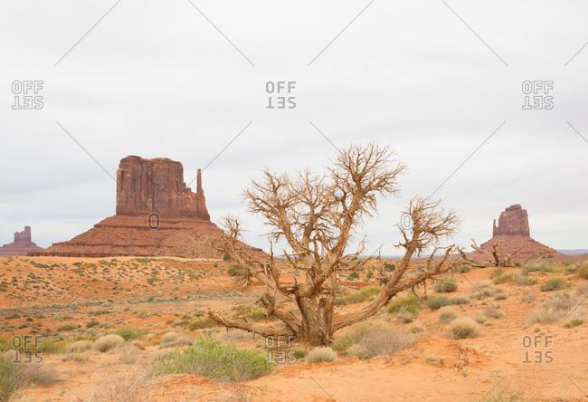 Navajo Tribal park in Monument Valley, Utah