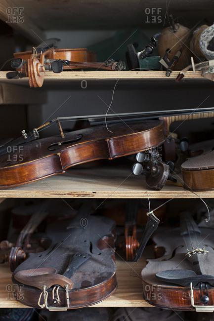 Several violins on shelves