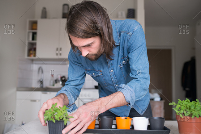 Man repotting plants in a kitchen