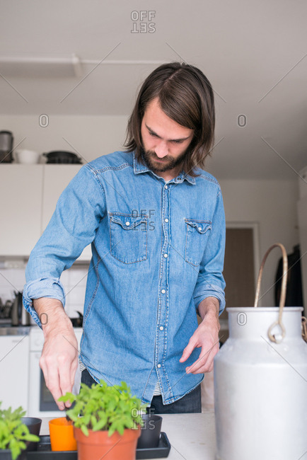 Man repotting plants in kitchen