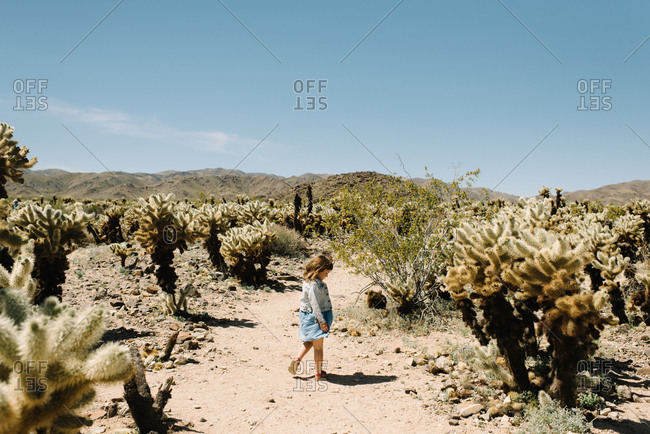 Girl wandering Joshua Tree National Park