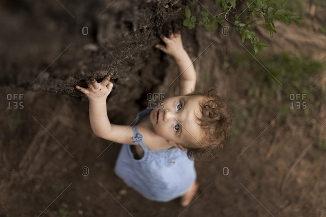 Toddler girl leaning against a tree looking up