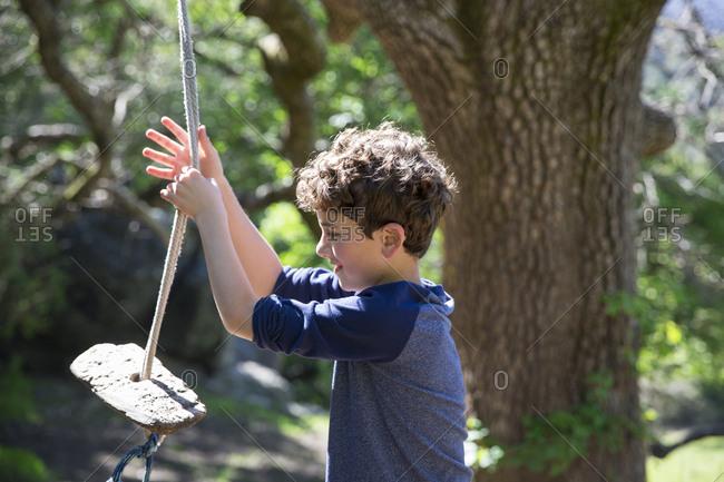Boy playing on rope swing