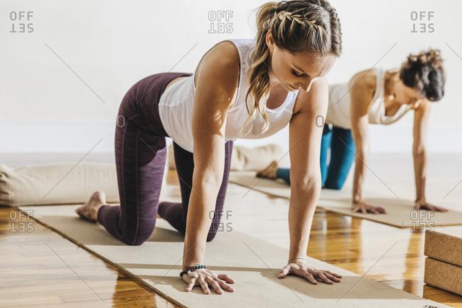 Women practicing yoga in cat pose