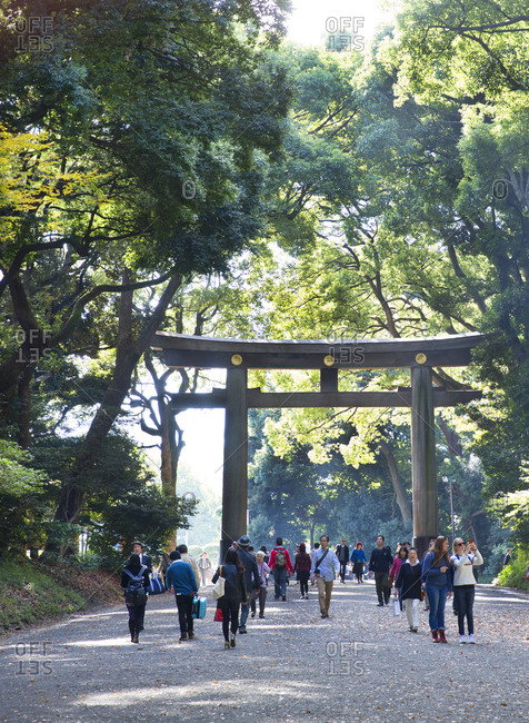 Tokyo, Japan - November 20, 2015: Many people walking through the torii gate entrance to the Meiji Shrine