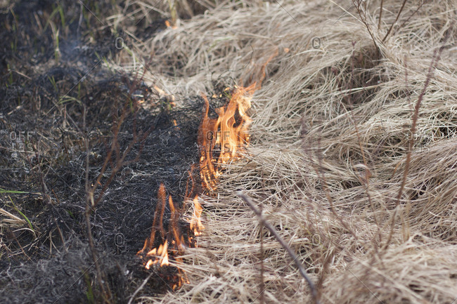 High angle view of burning dry grass