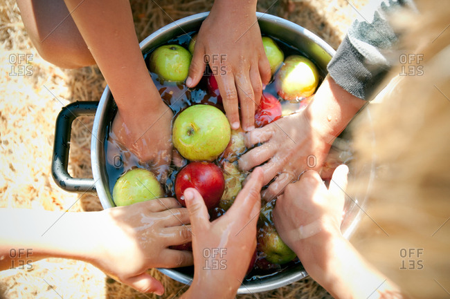 People washing apples