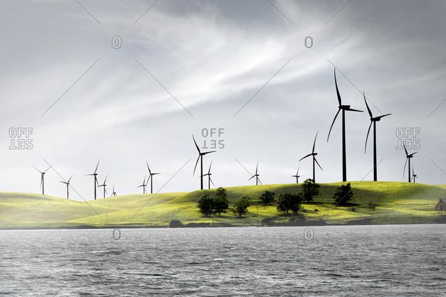 Wind farm on the California Delta, California, USA
