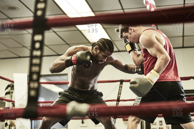 Male boxers practicing in boxing ring at health club