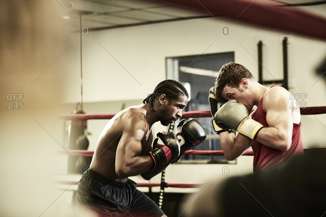 Side view of male boxers practicing in boxing ring at health club