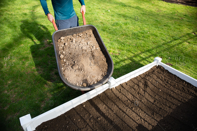 Person about to dump dirt from a wheelbarrow to fill a vegetable garden