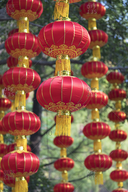 Lanterns in Lizhi Park, Shenzhen, Guangdong, China