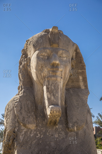 Sphinx at Memphis (capital of Ancient Egypt), Nr. Cairo, Egypt
