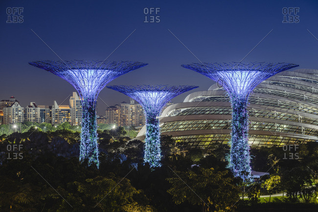 Singapore - November 4, 2016: Singapore, Republic of Singapore, Southeast Asia. Gardens By The Bay trees with the city skyline in the backdrop.