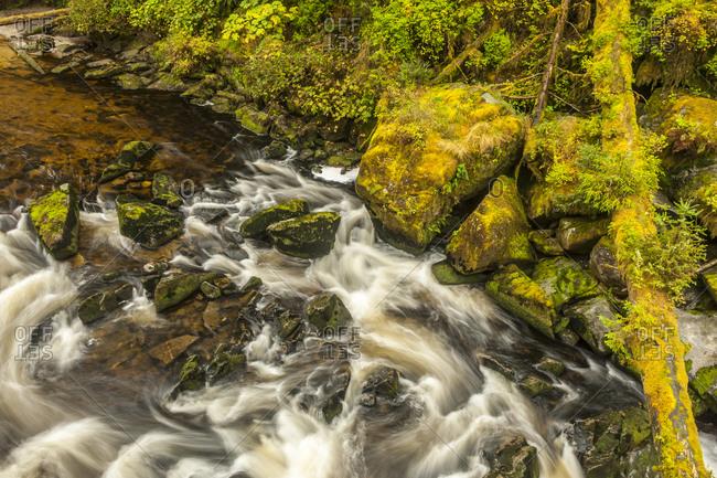 USA, Alaska, Tongass National Forest. Anan Creek scenic.