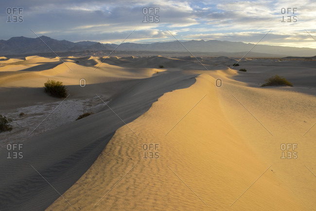 USA, California, Death Valley, Mesquite Flat Sand Dunes at sunrise.