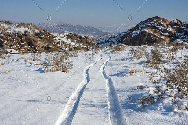 Tracks in the Snow, High Desert, California