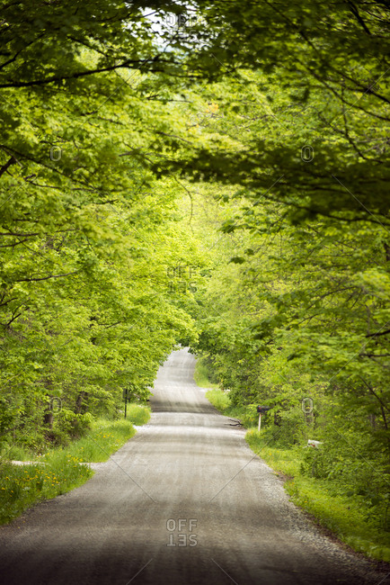 Country road in spring in Weybridge, Vermont